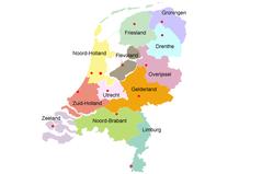 Verzend bloemen in heel Nederland