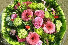 Mooiste bloemen in Emmeloord