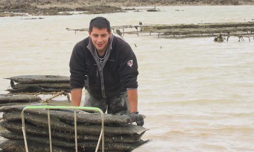 Aurélianot Moissenot travaillant sur les parcs ostréicoles