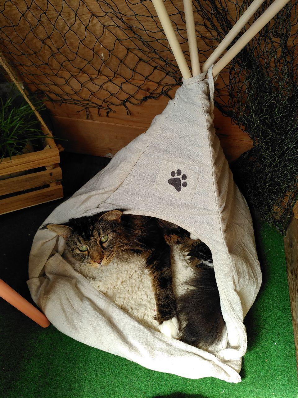 Wie Camping Ferien