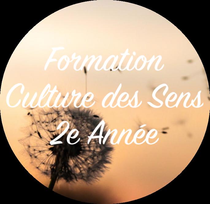 Formation Culture des Sens 2e Année