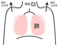 正しい胸式呼吸をする