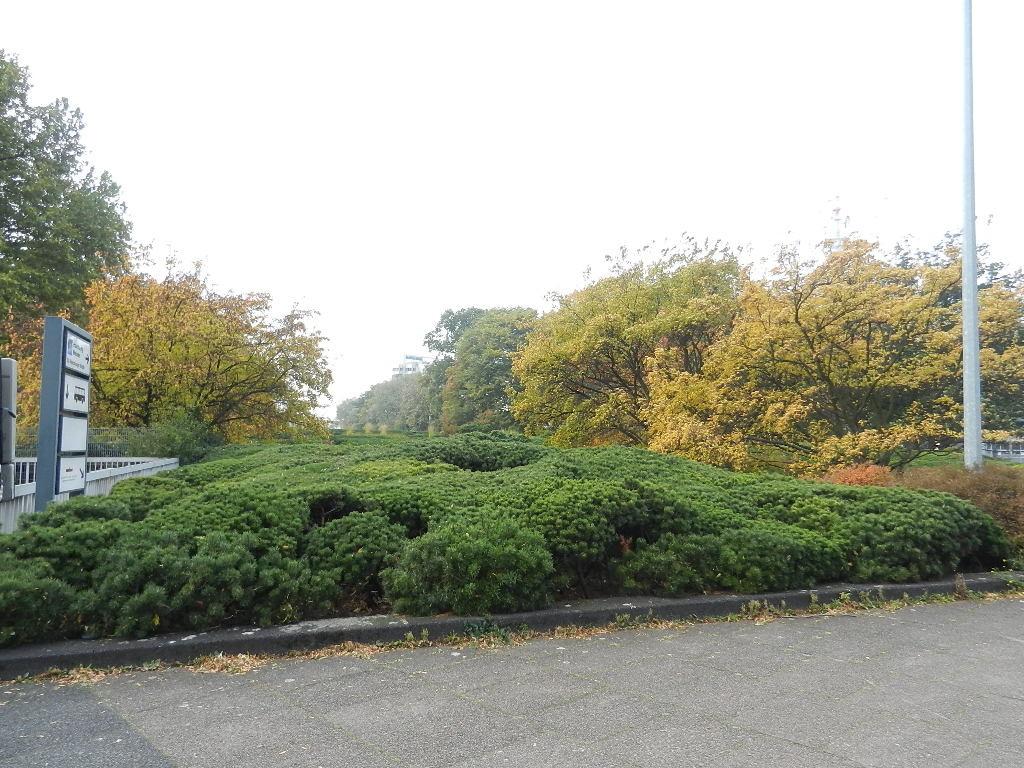 """Impression aus dem """"Planten und Blomen"""" Park"""
