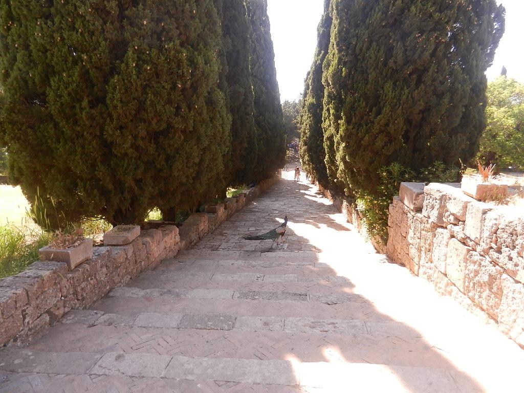auf dem Weg zum Kloster...