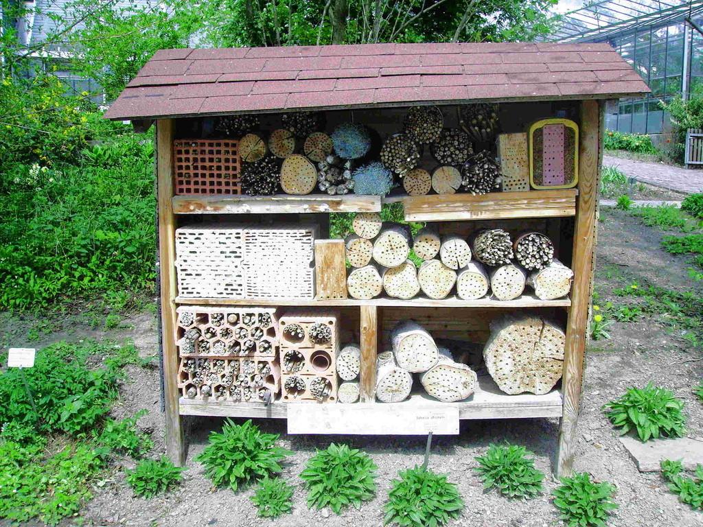 ...Unterschlupf für Wildbienen