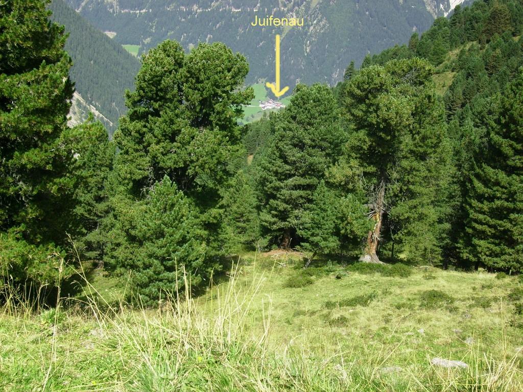 Blick ins Tal - nach Juifenau