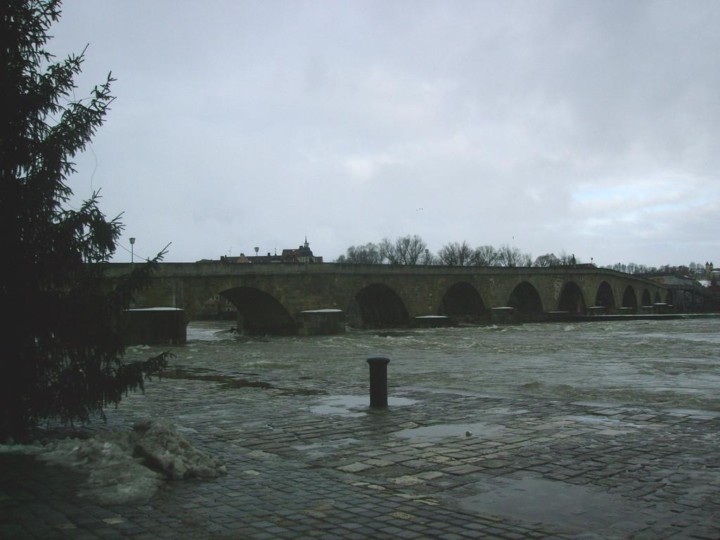 Blick auf das Wahrzeichen - mit einer Hochwasser führenden Donau