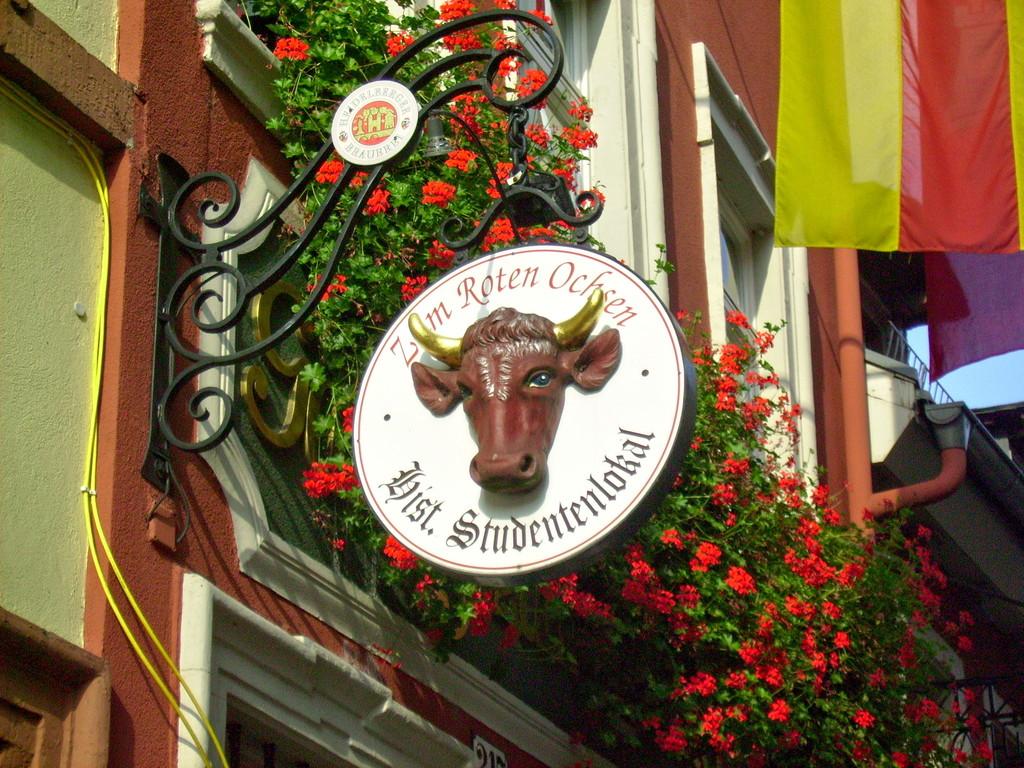 ....in Heidelberg