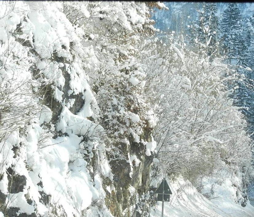 bei traumhaften Winterwetter ging es zum Wolfgangseer Advent