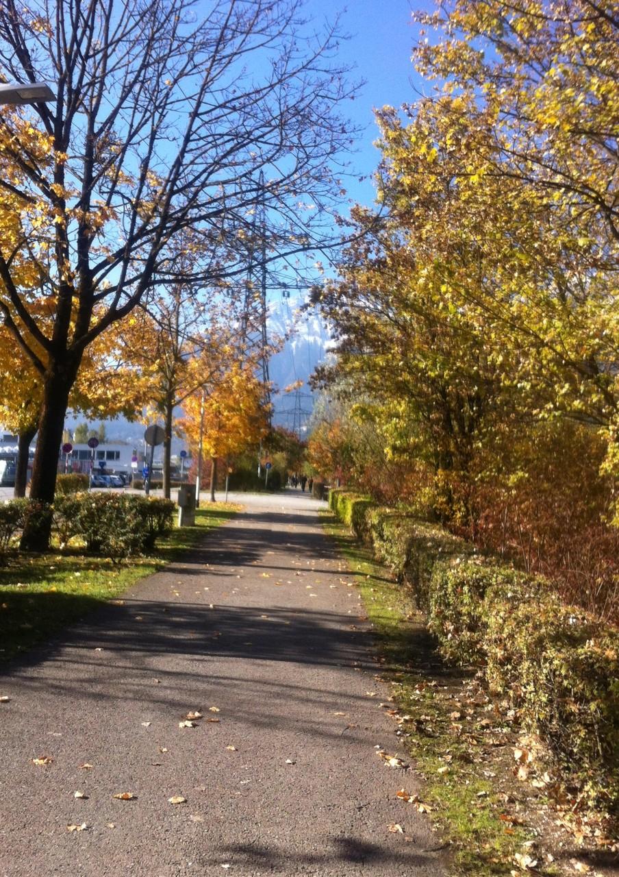 Herbst - entlang der Innpromenade in Innsbruck - Ende Okt. 2015