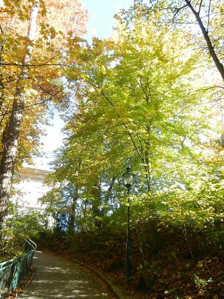 auf dem Fußweg zum Bergisel