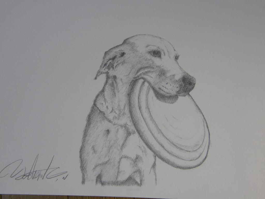 愛犬のベス
