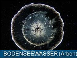 BODENSEEWASSER - ARBON