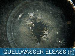 QUELLWASSER - ELSASS (F)