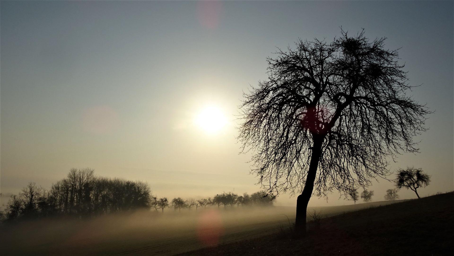 Neblige Landschaft bei Felsberg