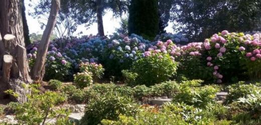 Insbesondere der Schlosspark hatte es ihr angetan. «Die Farben und der Duft versetzten mich sofort in Ferienstimmung», so die Leserin.