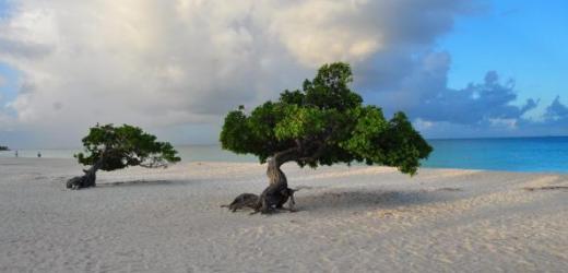 Platz vier: Eagle Beach, Palm/Eagle Beach, Aruba
