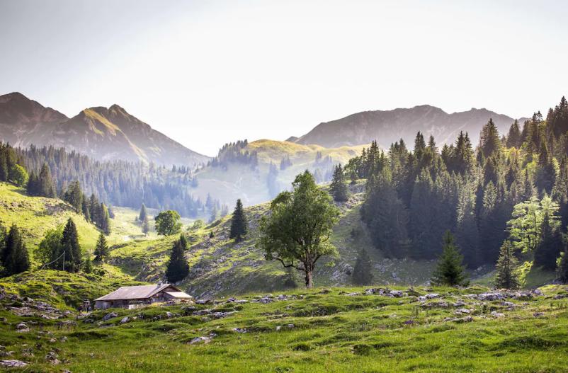 Der Breccaschlund im Freiburgerland ist eine Urlandschaft, die durch Gletscher geformt wurde.