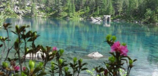 Platz fünf: Lagh da Saoseo (Saoseosee), Poschiavo GR Kommentar von Maurice: «Das Wasser klar und blau. Alpenrosen und Arven statt Stau.»