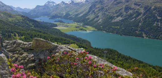 Blick auf Silvaplanersee (vorne) und Silsersee (hinten), wie man sie vom Süden her sieht. (Bild: Swiss-Image)