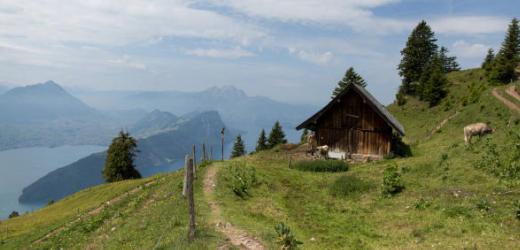 «Mir gefällt, dass es auf der Rigi zahlreiche Wanderwege mit unterschiedlichen Schwierigkeitsgraden gibt», schrieb Julia aus Hünenberg (ZG), Die Leserin besteigt den Zentralschweizer Berg mindestens jedes Jahr einmal.