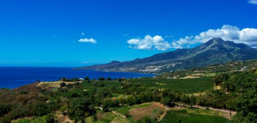 Basse-Pointe, Trinité, Martinique.