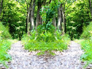 ヒプノセラピー(催眠療法)と潜在意識と前世