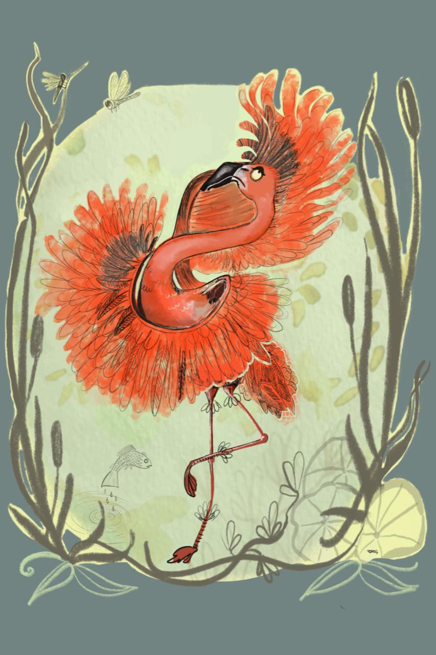 Flamenko Flamingo