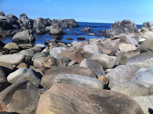 犬吠埼の海岸にころがる銚子石たち