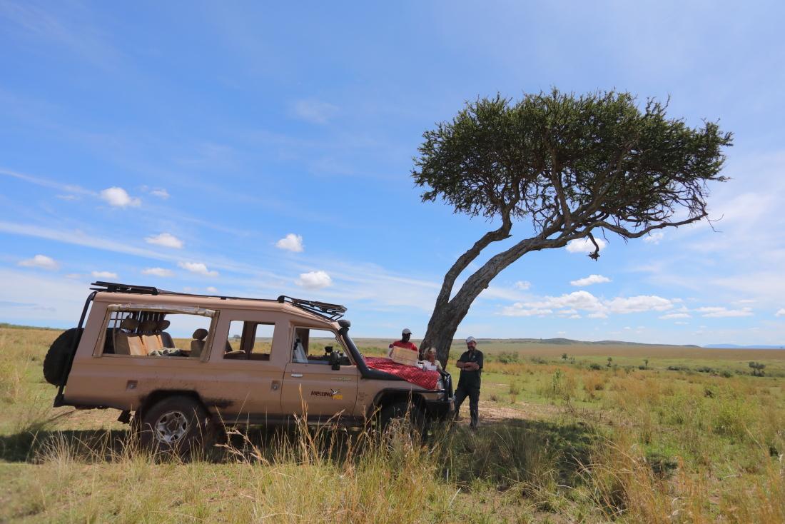 Le petit-déjeuner à l'ombre d'un acacia