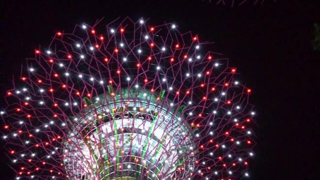 Singapur Gardens by the Bay Nacht