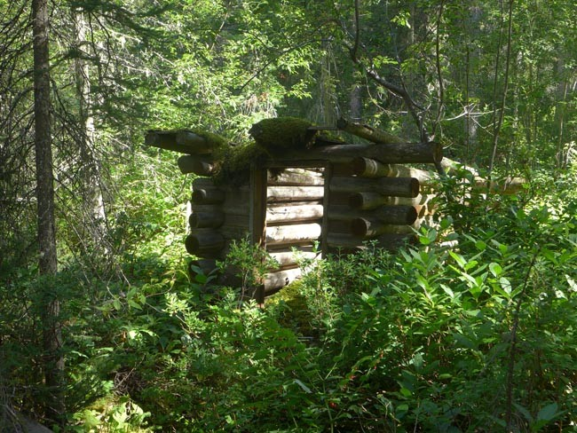 Kanada Alberta Nationalpark Hütte Wald