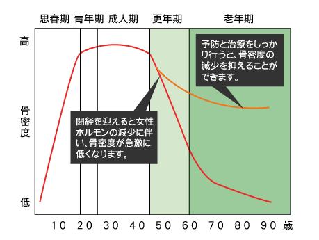 年齢と骨密度の減少過程を表すグラフ