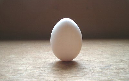 立春には卵が立つ
