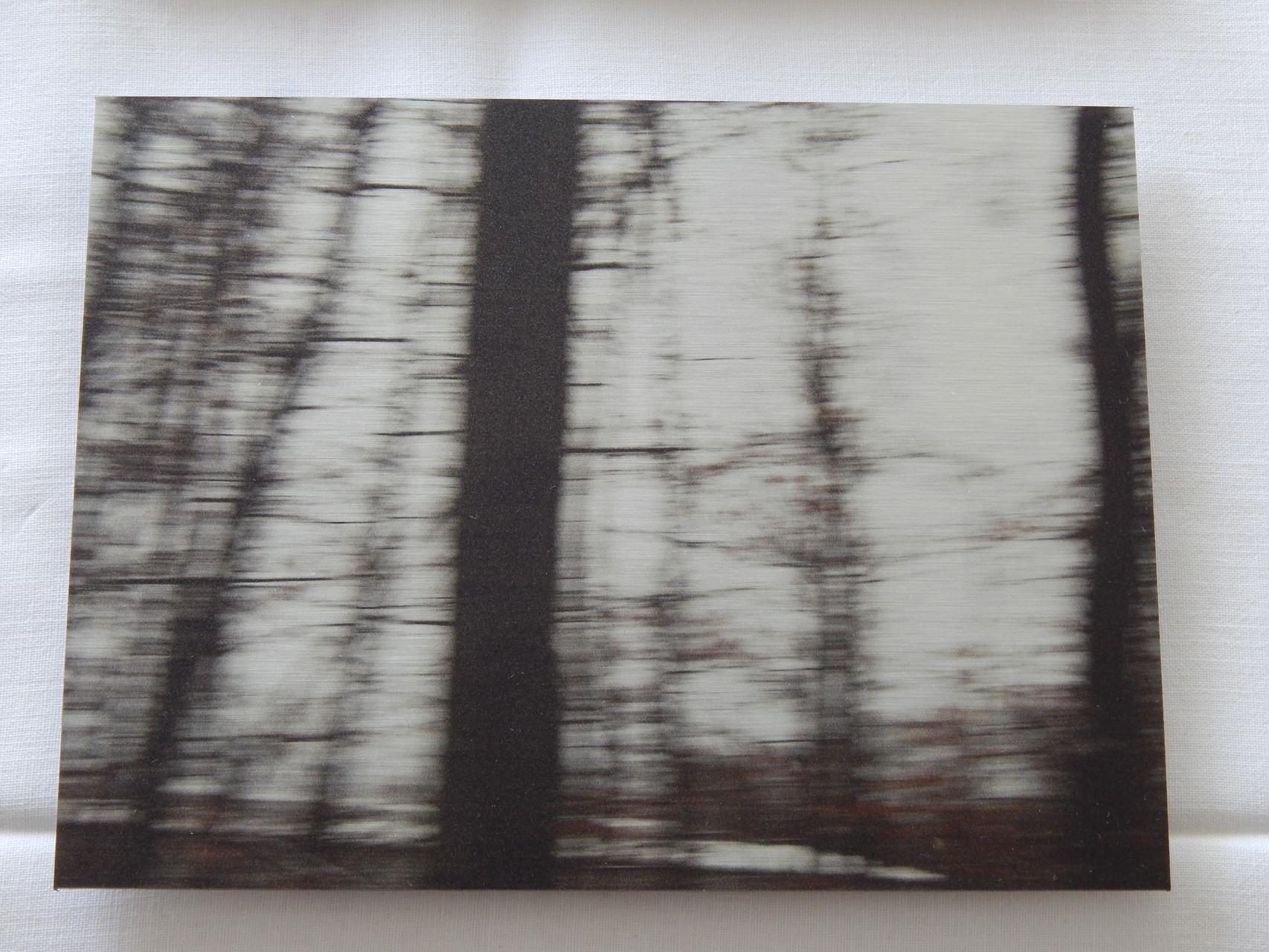 Nr.5 2015 15x20cm Print auf Aluminium 80.-