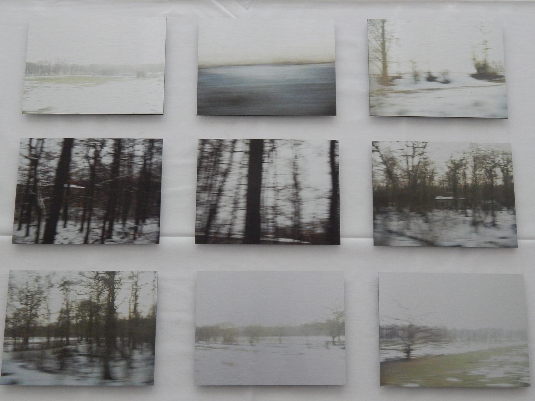 Ich glaub, ich bin im Wald 2015 neun Teile 15x20cm Print auf Aluminium