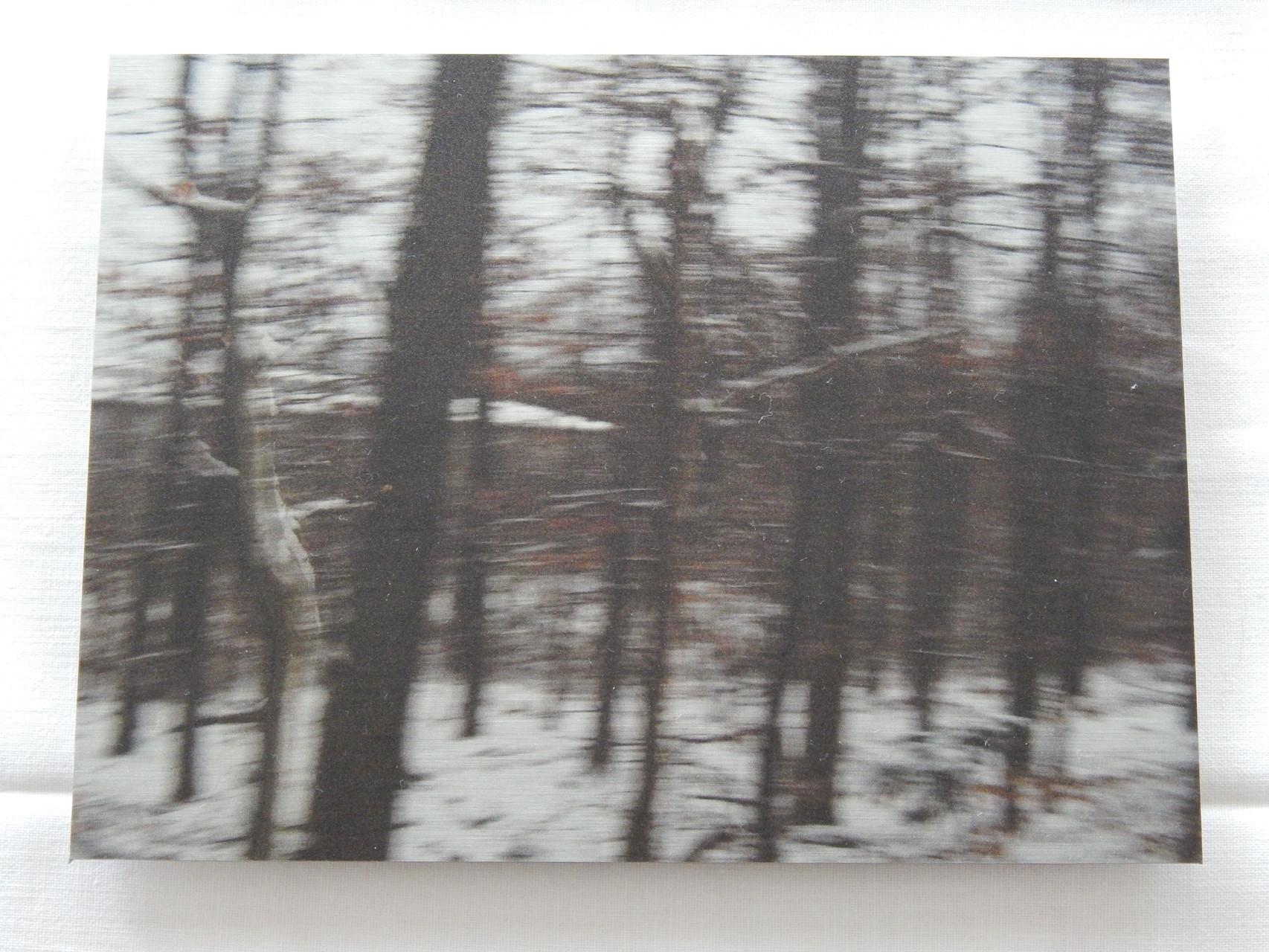 Nr.4 2015 15x20cm Print auf Aluminium 80.-
