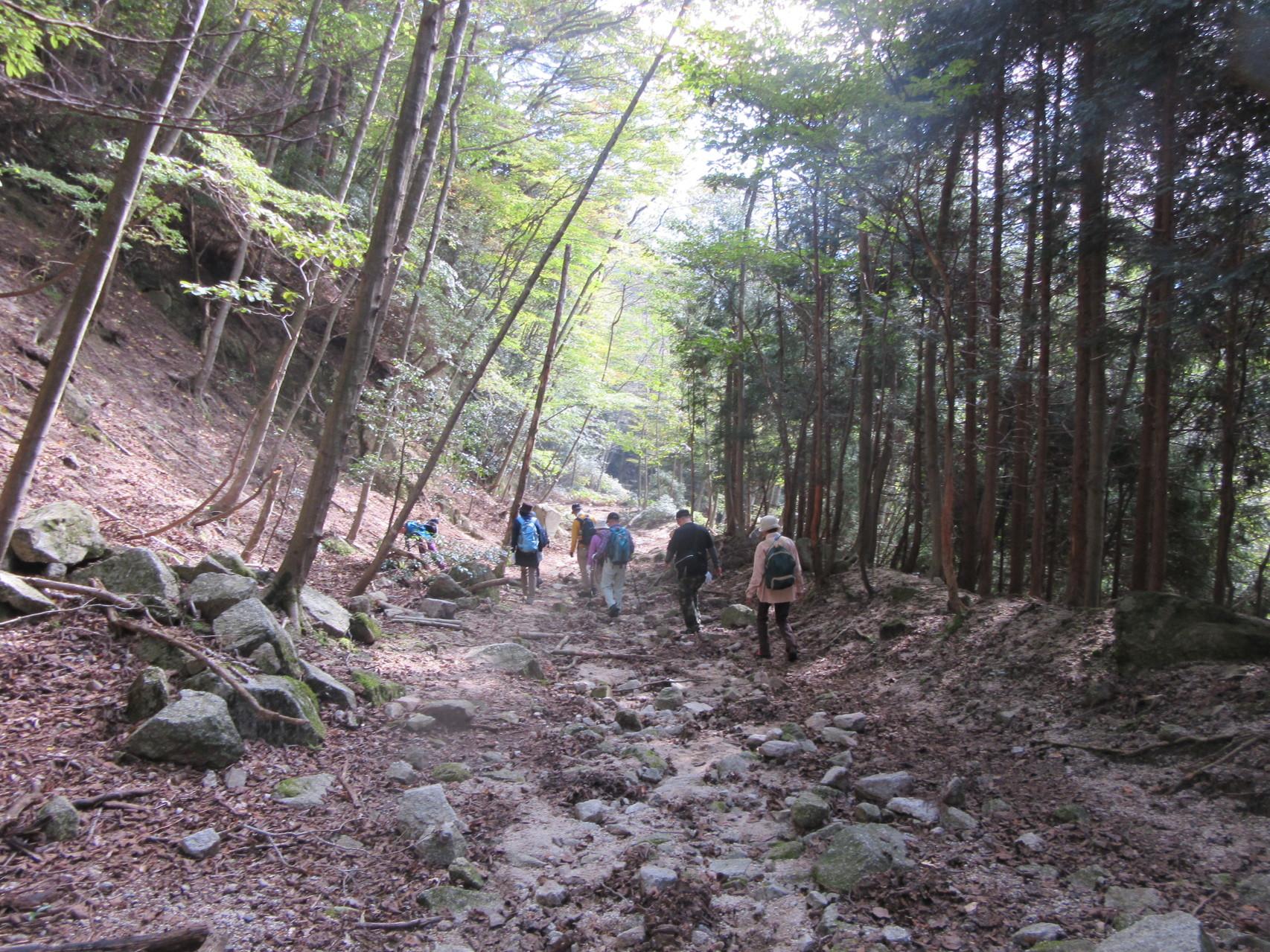 下山 登山道は荒れていました