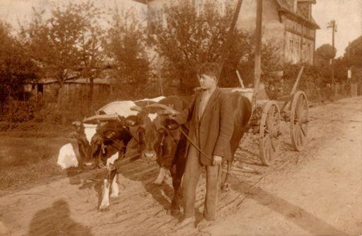 Gespann am Kuckatz-Graben, um 1930.