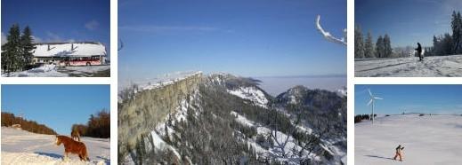 Schönste Winterwanderung Jura - auch mit Schneeschuhen