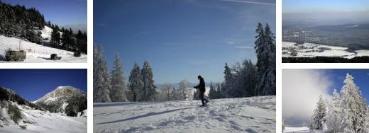 schneeschuhtouren grenchenberg