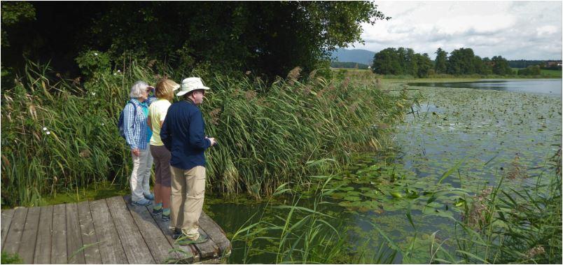 Vogelbeobachtung an Emme und den Naturseen