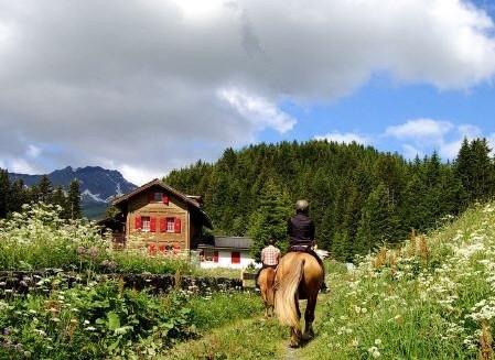 Ferien auf dem Bauernhof im Mittelland