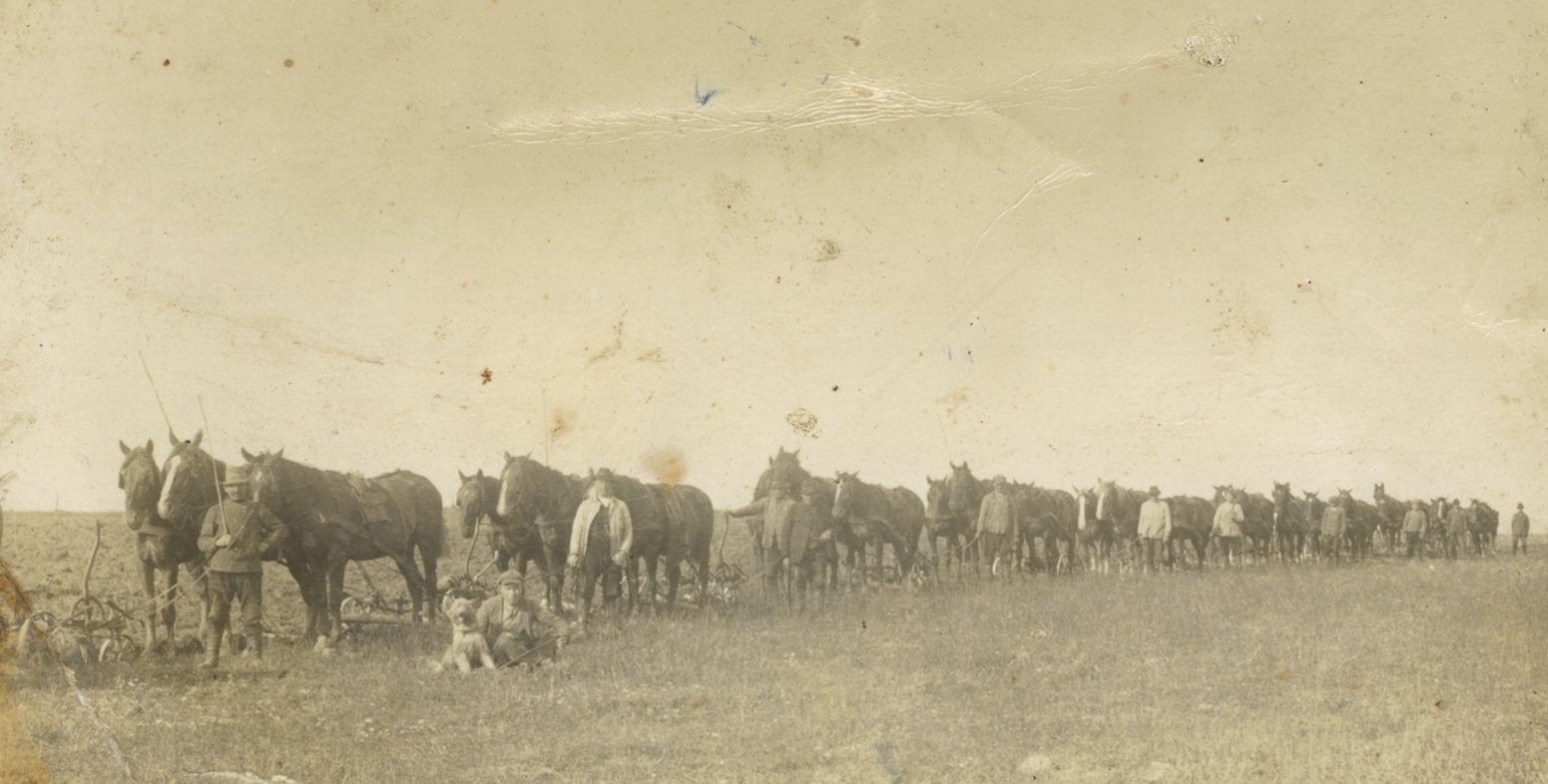 Landwirtschaft in der zweiten Hälfte des 19. und der ersten Hälfte des 19. Jahrhunderts.