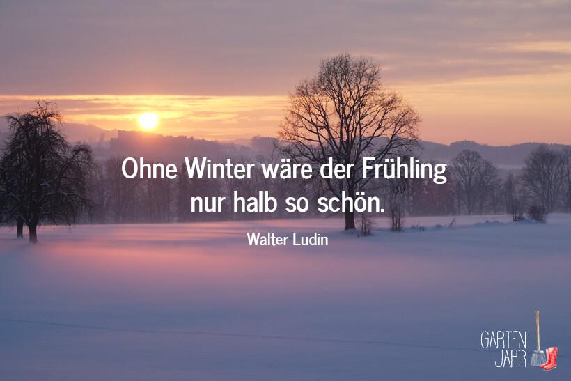 Gartenspruch: Ohne Winter wäre der Frühling nur halb so schön. Walter Ludin