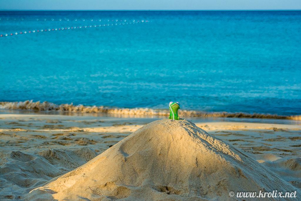В своём песчаном замке гордо восседал Кермит, потерявший жабо...