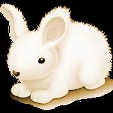 1. Тропы белого кролика