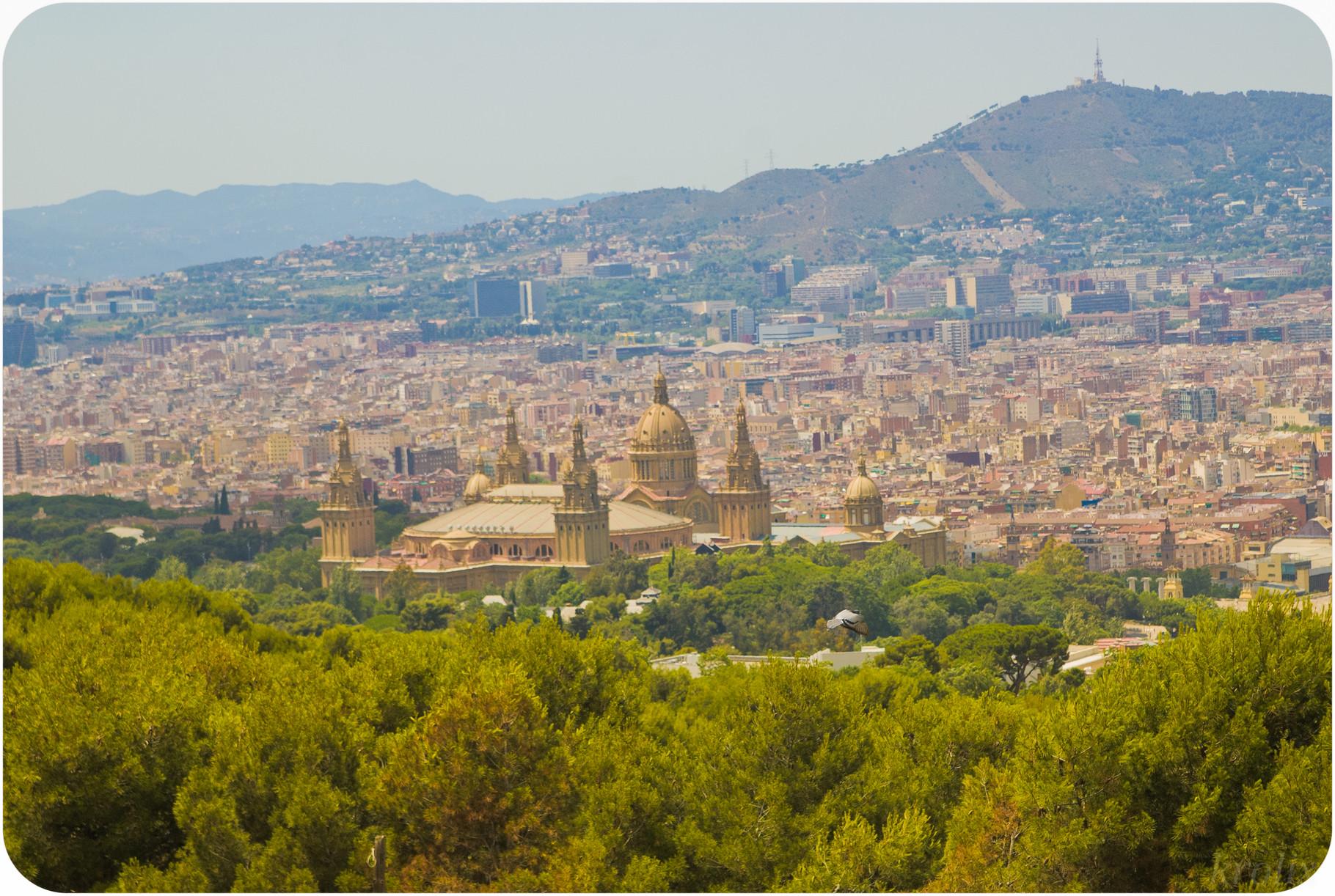Барселона во всей красе с горы Монжуик