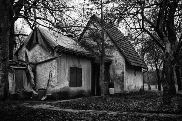 Haus, Wald, Eigentum, Eigenbedarf, Obdachlosigkeit, Krankheit, Armut