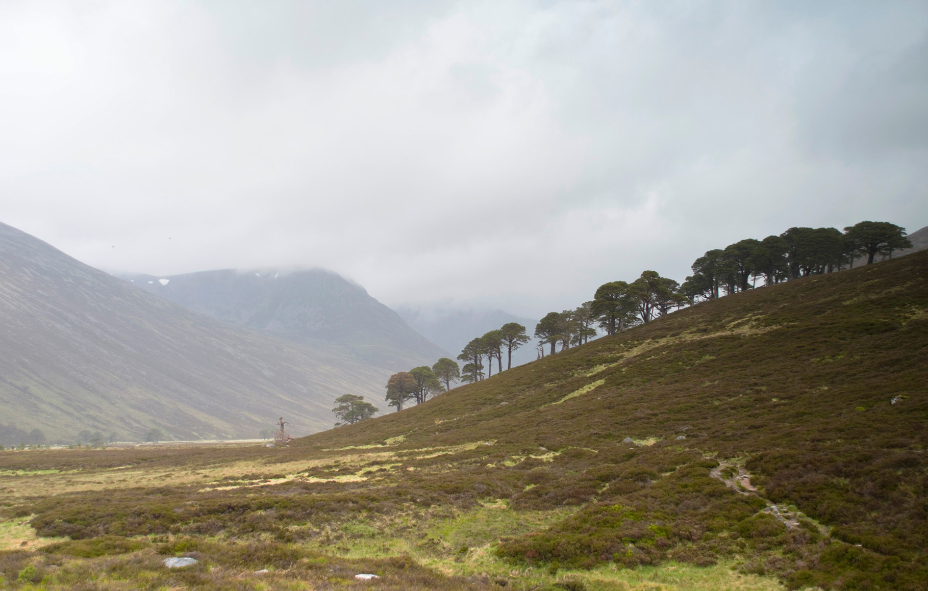 Lairig and Lui